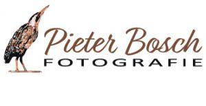 Pieter Bosch fotografie